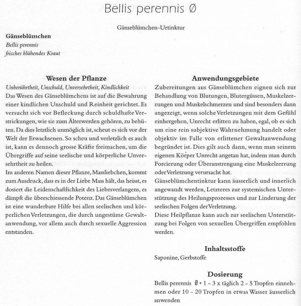 Bellis perennis aus CERES Compendium
